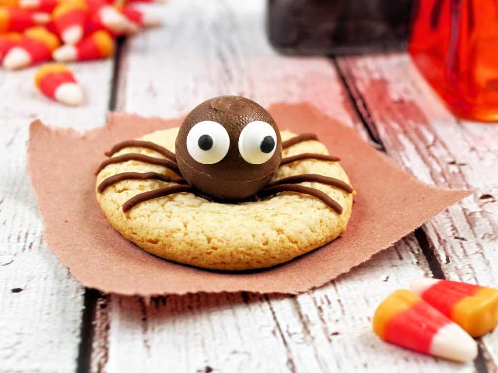 Single Halloween spider cookie on a rustic white wood background with candy corn